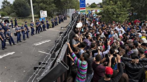 migrants-002.jpg